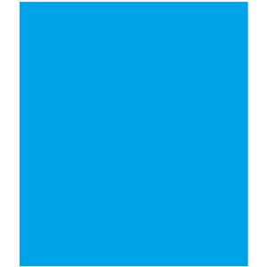 ETL Data Migration - Real BI Solutions